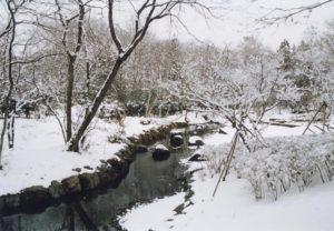 isokawa03