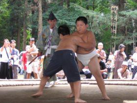 sumo00
